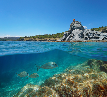 Spain coastline with a rocky islet and sea breams fish underwater near Colera on the Costa Brava, split view half over and under water, Mediterranean, Catalonia Banque d'images - 117727733