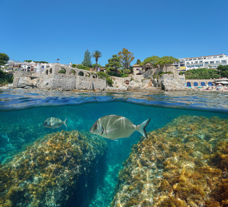Spain Calella de Palafrugell coast with fish underwater, split view half over and under water, Costa Brava, Mediterranean sea, Catalonia Banque d'images - 117727734