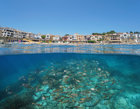 Spain Calella de Palafrugell waterfront village with a shoal of fish underwater, Costa Brava, Mediterranean sea, Catalonia, split view half over and under water Banque d'images - 117727738