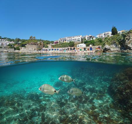 Spain coast at Calella de Palafrugell with fish underwater, Costa Brava, Mediterranean sea, Catalonia, split view half over and under water Banque d'images - 117727826