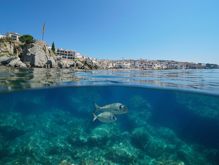 Spain coastline at Calella de Palafrugell village with rocky seabed and fish underwater, Costa Brava, Mediterranean sea, Catalonia, split view half over and under water Banque d'images - 117727844
