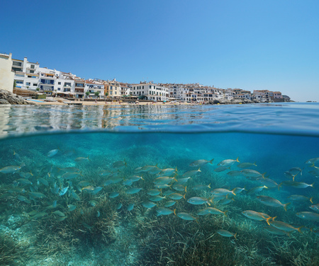 Spain Calella de Palafrugell coastal village with a school of fish underwater, Costa Brava, Mediterranean sea, Catalonia, split view half over and under water Banque d'images - 117728022