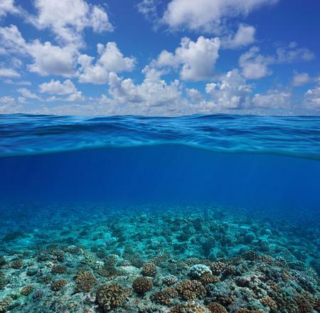 Fondale marino subacqueo della barriera corallina con cielo blu e nuvole, vista divisa per metà sopra e sotto la superficie dell'acqua, Oceano Pacifico, Polinesia francese