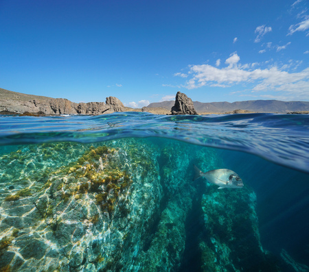 Rocky coast and a sea bream fish underwater in the Cabo de Gata Nijar natural park, Spain, Mediterranean, Almeria, Andalusia, split view half over and under water Banque d'images - 117728033