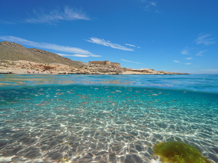 Spain Mediterranean coast with a castle and school of fish (bogue) with sand underwater sea, el Playazo de Rodalquilar, Almeria, Andalusia, split view half over and under water Banque d'images - 117728043