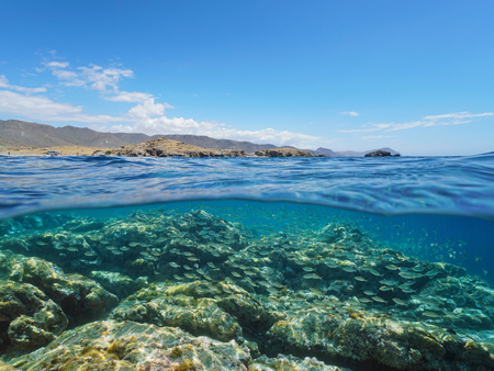 Spain Cabo de Gata Nijar coast with school of fish and rocky seabed underwater, Mediterranean sea, Almeria, Andalusia, split view half over and under water Stock Photo