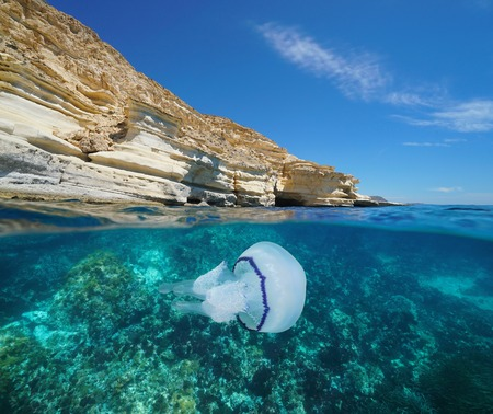 Coastal cliff with a jellyfish underwater, Mediterranean sea, Spain, Almeria, Andalusia, Cabo de Gata Nijar natural park, split view half over and under water Banque d'images - 117728074