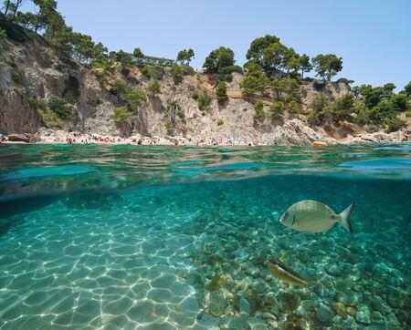 Spanien-Strand an felsiger Küste mit Fischen unter Wasser in der Nähe von Calella de Palafrugell, Costa Brava, Mittelmeer, Katalonien, geteilte Ansicht halb über und unter Wasser
