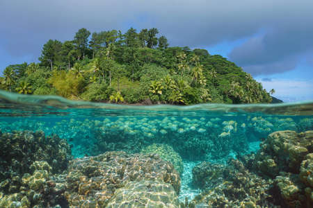Tropical seascape, fish with coral reef underwater and luxuriant island, split view over-under water surface, French Polynesia, Pacific ocean, Huahine, Oceania