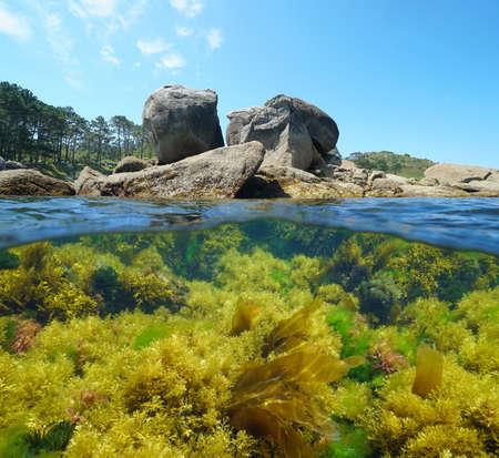 Spain Atlantic coast in Galicia, large rocks and seaweeds underwater in the ocean, split view over and under water surface, Bueu, Pontevedra province