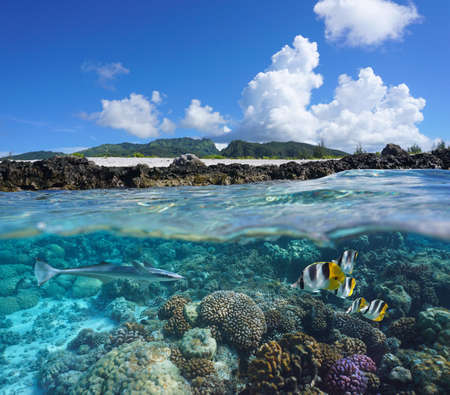 Coral reef with tropical fish and island seashore, split view over and under water surface, south Pacific ocean, French Polynesia, Huahine Foto de archivo