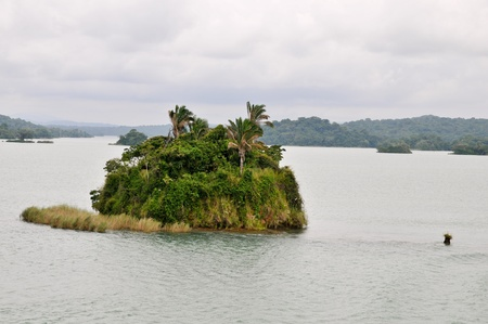 Islands in the artifitial lake Gatun of the Panama Channel