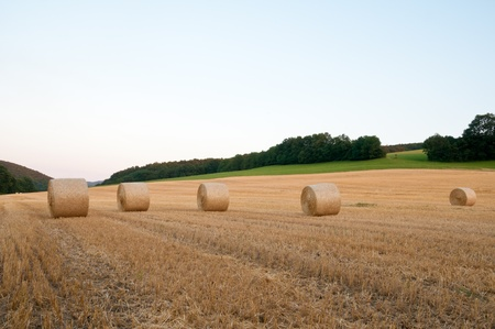 Haystraw rolls in the harvested field with green grass and cross in the background