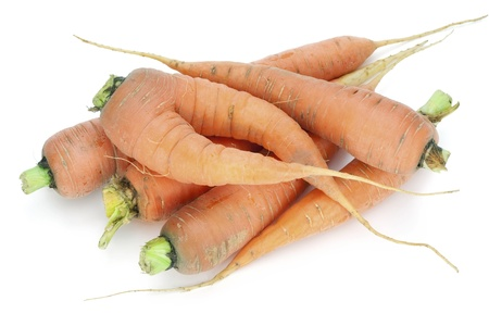 grown up: Rural ecological carrot - is grown up without fertilizers. White background  Stock Photo