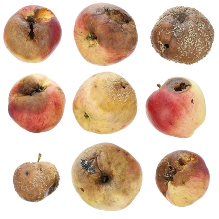 inedible: The rotten spoiled inedible apples set isolated Stock Photo