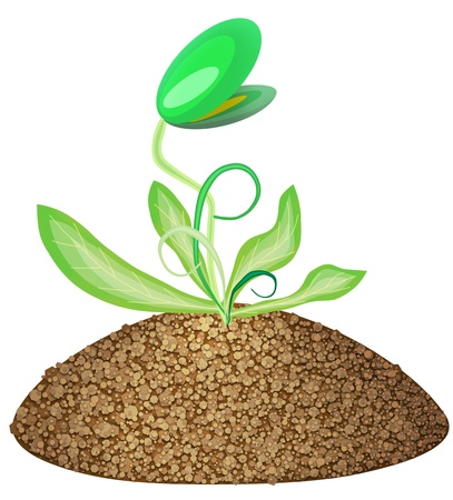humus: Isolated abstract green young sapling sprout  of  plant on humus bed illustration