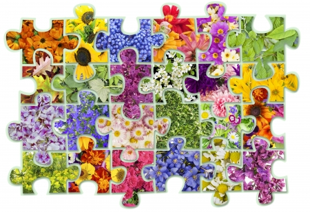 abstract collage -  floral flowers plants  puzzles concept background  Contains patches