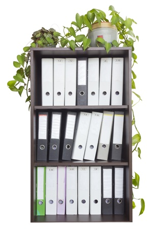 office cabinet: In a wooden office cabinet is  a lot of folders with old  paper mattered accounting files. Indoor plants in pots are in the closet. Isolated Stock Photo