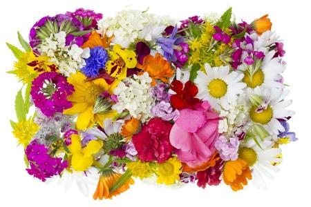 Zomer eenvoudige tuin bloemen hoop textuur geïsoleerd. Seizoen natuur begrip Stockfoto