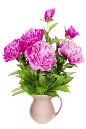 mournful: Minimalistic mourning mournful  bouquet isolated - six pink fresh peonies in a simple clay vase Stock Photo