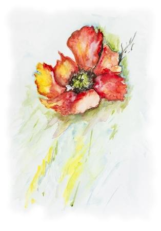 Solitaria flor de los sumideros de amapola flota en el río frío - acrílico hecha a mano ejemplo de la pintura sobre un fondo blanco de papel de arte Foto de archivo - 19426495