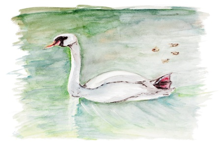 Tired autumn swan concept isolated- handmade watercolor painting illustration on a white paper art background  illustration