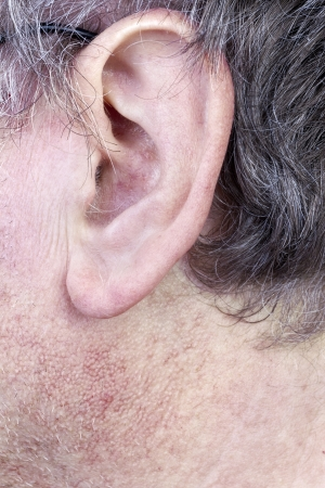 pores: Hairy ear of elderly man closeup. Gray hair, the skin is covered with pores and blood vessels. Selective focus