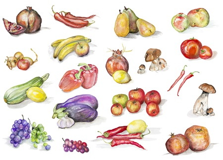 abstract art vegetables: Fruits, mushrooms  and vegetables isolated set-  handmade watercolor painting illustration on a white paper art background Stock Photo