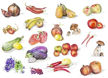 limon caricatura: Las frutas, setas y verduras aislados set-hecho a mano ejemplo de la pintura sobre un fondo blanco arte de papel