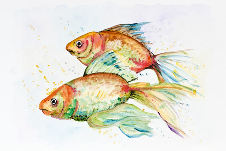 Two sad Goldfish swim in an aquarium. Handmade watercolor painting illustration on a white paper art background