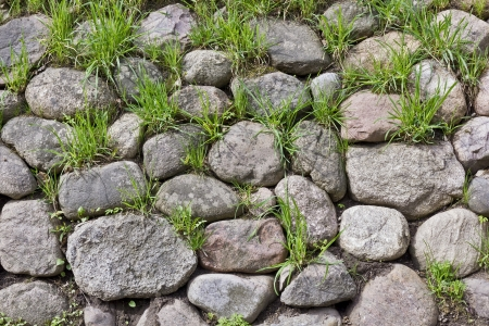 force of nature: Through granite stones boulders the green grass simply grows. Force of nature concept