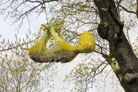 malevolent: Yellow Aliens  predator  stranger hangs on a tree near a nesting box