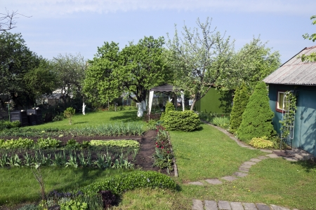 wakening: Spring wakening garden with a blossoming tulips and an emerald lawn landscape