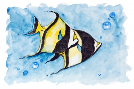 butterflyfish: Red sea banner fish  (heniochus intermedius)  isolated- Handmade watercolor painting illustration on a white paper art background  Stock Photo