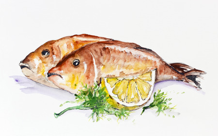 dorado fish: Dorado fish fried on the grill with lemon and parsley. Handmade watercolor painting illustration on a white paper art background  Stock Photo