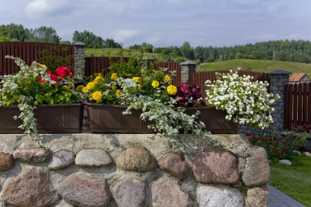 Floral summer  village landscape- stone fence, flowers, forest and sky. Selective art focus photo