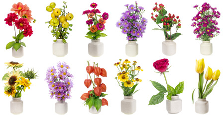 Minimalistic  floral bouquets  in  ceramic pots  set on white background. Full-size of all images you can find in my portfolio photo