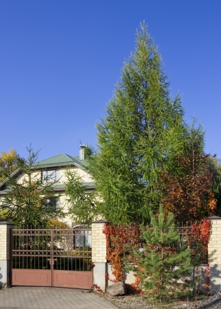 The villa behind the green fence of trees and shrubs  Sunny day  Vertical shot photo
