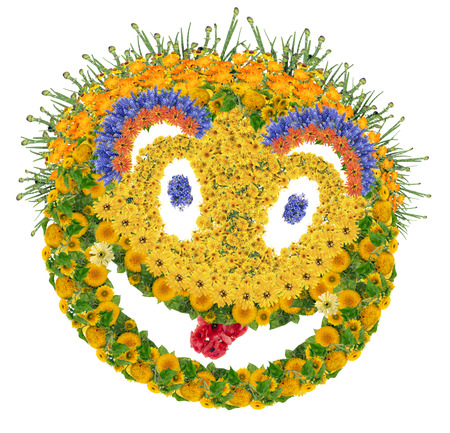 psychodelic: Cool cheesy psychodelic smile sign made from fresh summer flowers. Isolated collage
