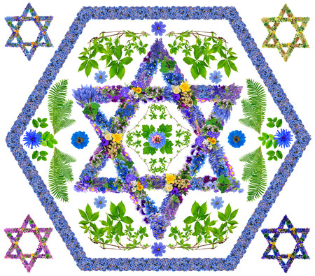 judaism: The symbol sign of Israel and Judaism - David star-  is made from fresh blue summer flowers. Isolated abstract handmade collahe