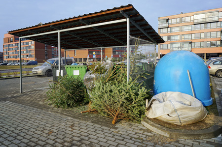 plastic christmas tree: End of Christmas and New Year concept. Festive fir-trees it is thrown out on a city garbage dump Editorial