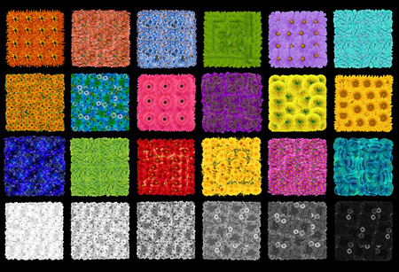 checker: Color checker rendition chart from flowers and plants. On black background abstract collage