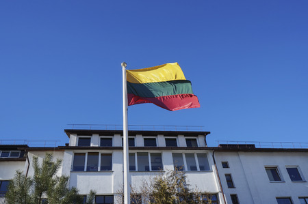 rural house: Flag of the state of Lithuania on a flagstaff near a rural house Stock Photo