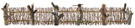 maldestro: Il terribile recinto goffo su Ognissanti Halloween è fatto di bastoni forestali secchi e rami. Isolata collage fatto a mano