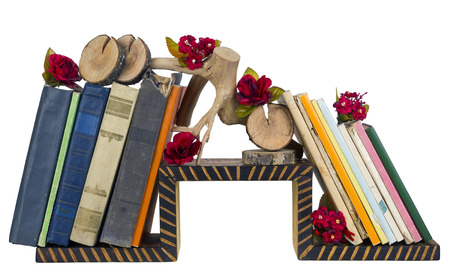selfmade: Rural nasty taste - a self-made wooden book shelf with decrepit paper volumes and installations. Isolated