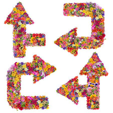 flechas curvas: Símbolos de las flechas curvas resumen están hechas de flores frescas de verano. Collage hecho a mano aislado