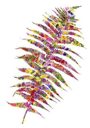 psychodelic: Abstract fern leaf  colored in summer flowers. Isolated collage Stock Photo