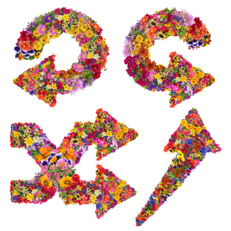 flechas curvas: S�mbolos de las flechas curvas y c�rculos abstractos est�n hechas de flores frescas de verano. Collage hecho a mano aislado