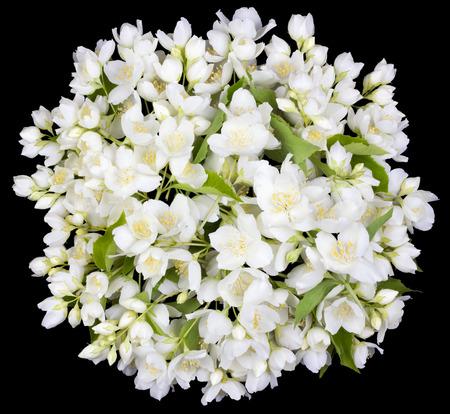 buttonhole: Tragic circle  buttonhole from white  jasmine flowers. Isolated on black