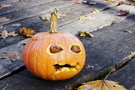 halloween ugly: Morning after a Halloween  holiday  concept. Terrible ugly pumpkin on a timber floor with maple leaves. Sunny day. Art focus Stock Photo
